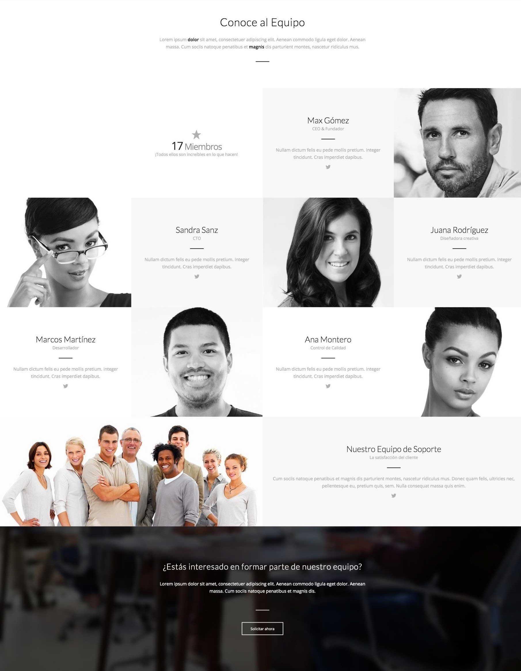 Página Interna Equipo